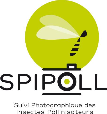 SPIPOLL : la photographie au service de la biodiversité