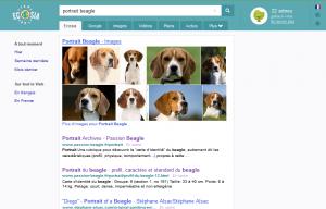 résultats du moteur de recherche solidaire